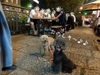 なやばし夜市 (1)