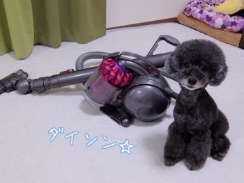 掃除機 (5)
