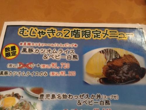 KagoshimaMujyaki_005_org.jpg