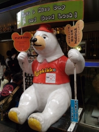 KagoshimaMujyaki_014_org.jpg