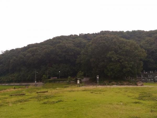 KurashikiPotter2_009_org.jpg