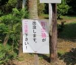 NichinanUdo_002_org.jpg
