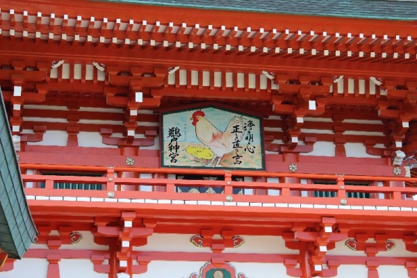 NichinanUdo_004_org.jpg