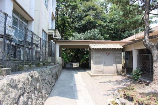 SakurajimaTorii_008_org.jpg