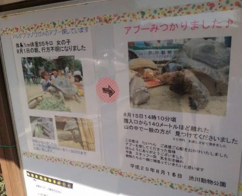 ShibukawaZoo_011_org.jpg