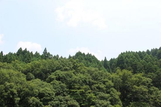 TakachihoGohogama_001_org.jpg