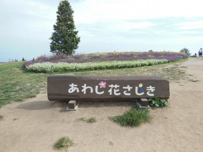 DSCN8141.jpg