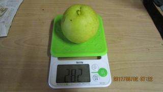 2梨大きさ