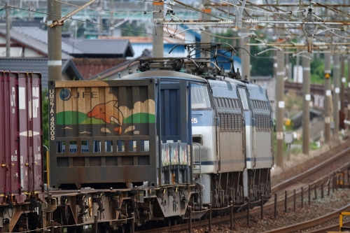 EF66 132代走+無動125・5085レ 下地駅