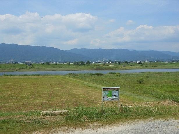東名遺跡 (巨勢川調整池内の貝塚。盛土保存されている)