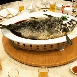 マレーシア魚_convert_20170803160039