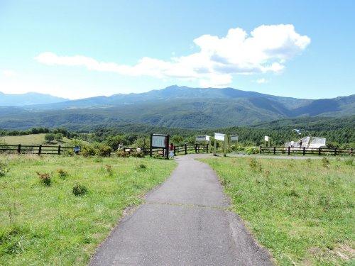 01嬬恋牧場
