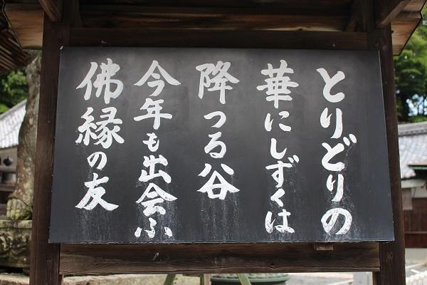 2017.07.24 柳谷観音-3