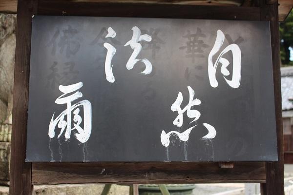 2017.08.21 柳谷観音-3