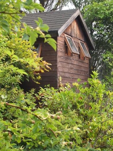 my-garden 010 (2)