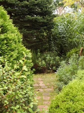 my-garden 110