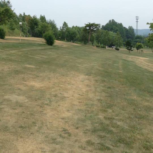 十勝 本別 太陽の丘PG (6)
