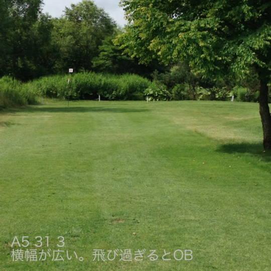 東川 親水河川公園パークゴルフ場 (2)