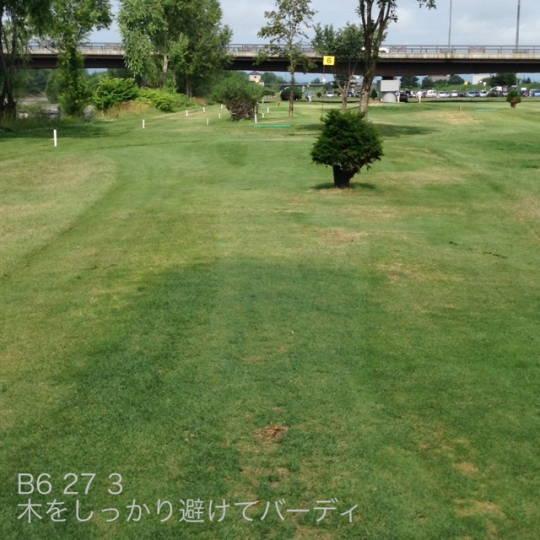 東川 親水河川公園パークゴルフ場 (4)