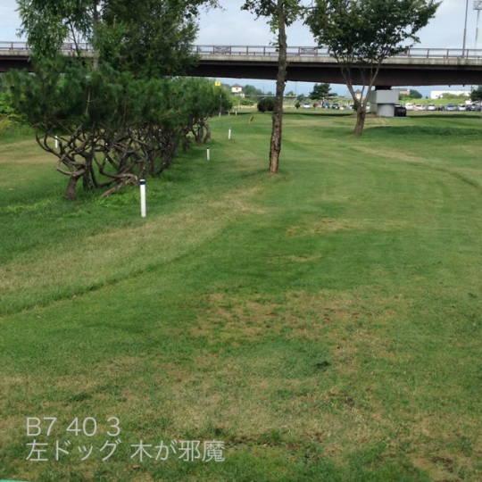 東川 親水河川公園パークゴルフ場 (5)