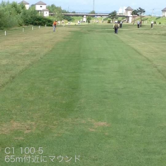 東川 親水河川公園パークゴルフ場 (7)