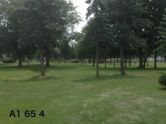 帯広の森PG (運動公園コース) (1)