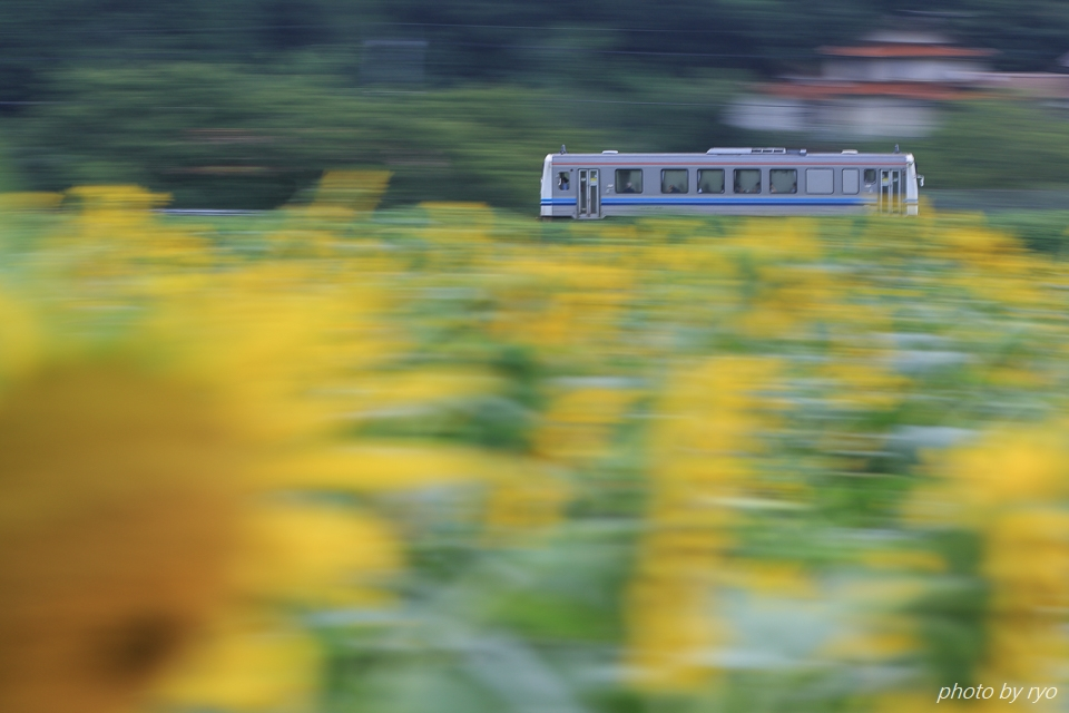 三江線の夏 ~大輪の花とともに~ _3