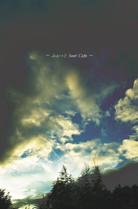 早朝の雲と竹