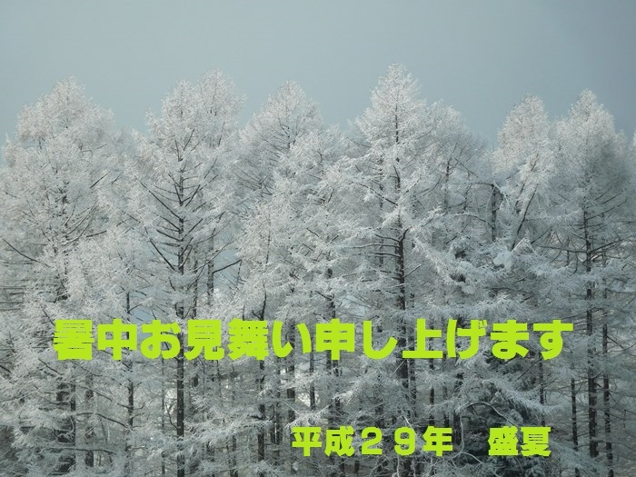 DSCN5351(暑中見舞い)