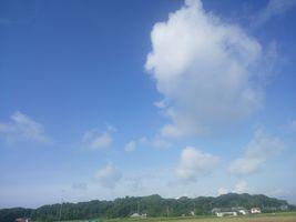 【写真】農園から見上げる青い空と白い雲