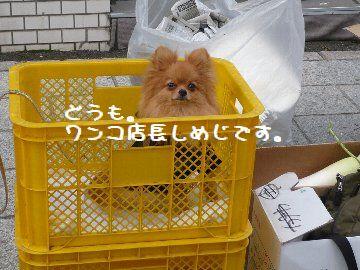 201006_17082901.jpg