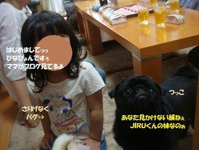 DSC00458_20121211001048[1]