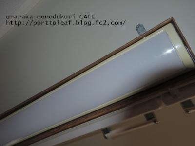 IMGP4080.jpg