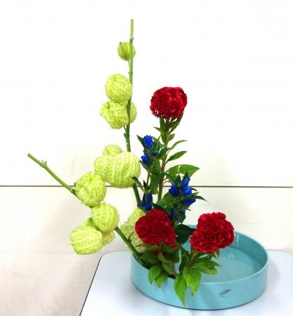 DSC00827-盛り花170911