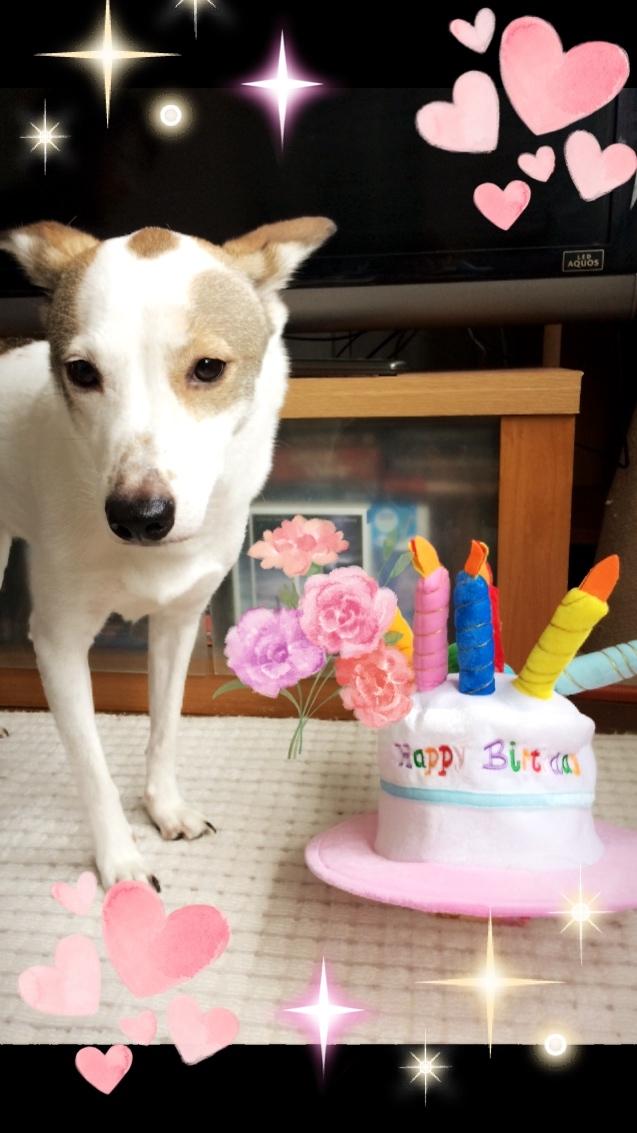 4歳のお誕生日おめでとう🎉