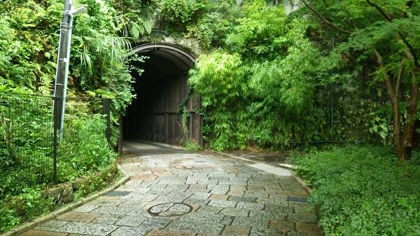 7外の緑のトンネル