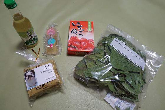 ぴょん子170820_18