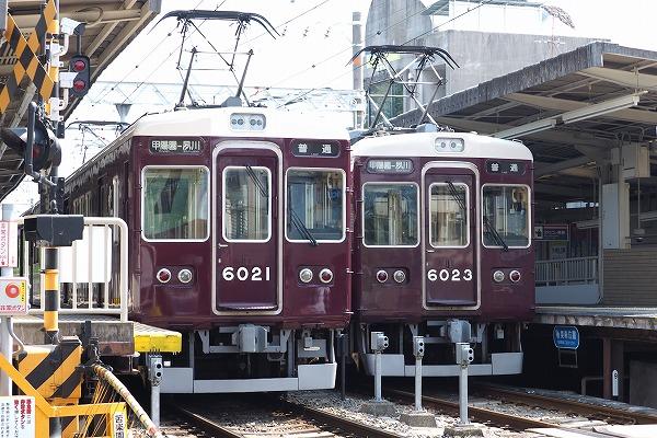 E7160075.jpg