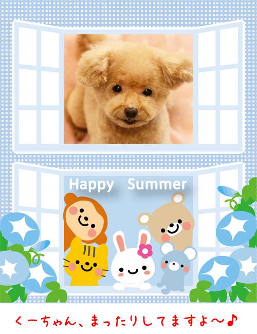 summer_f65_1.jpg