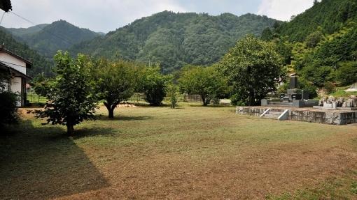 6142草刈り17881