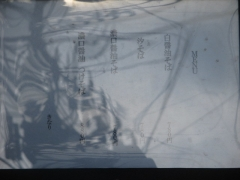 麺処 きなり【壱八】-9