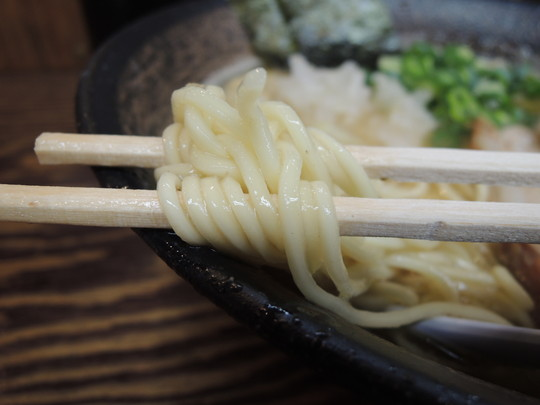 濃厚煮干し中華そばの麺