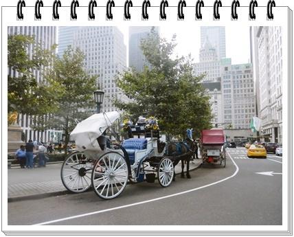 Manhattanの馬車1