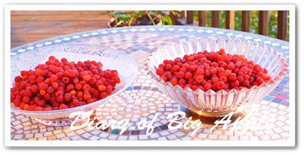 庭のraspberry