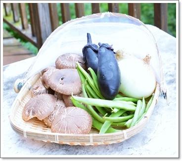 椎茸他の野菜
