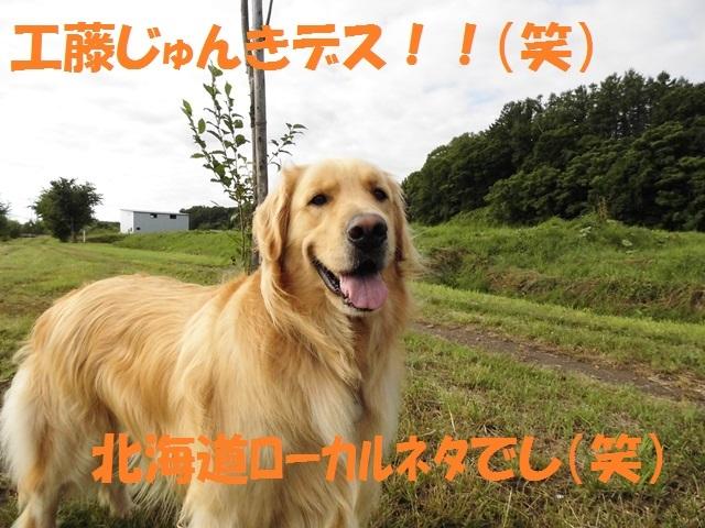 CIMG1709_P.jpg