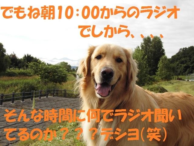 CIMG1714_P.jpg