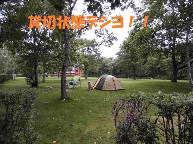 CIMG2339_P.jpg