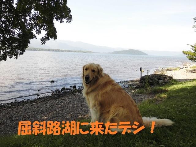 CIMG2377_P_201708242101442f5.jpg