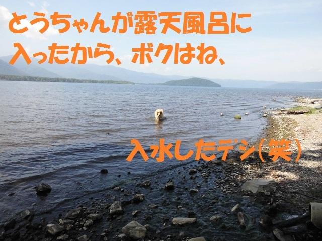 CIMG2385_P_20170824210147de1.jpg
